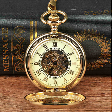 cheap Mechanical Watches-Men's Pocket Watch Mechanical manual-winding Gold New Design Casual Watch Analog New Arrival Steampunk Skeleton - Golden