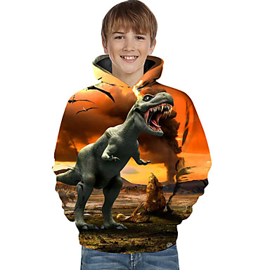 cheap Boys' Clothing-Kids Toddler Boys' Active Basic Dinosaur Geometric 3D Animal Print Long Sleeve Hoodie & Sweatshirt Yellow