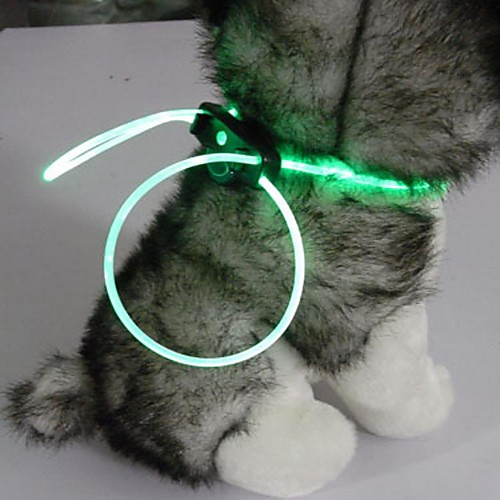 Ошейник для котов своими руками в домашних условиях