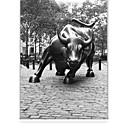 billige Duker-Classic Black And White Running Bull Status Roller Shade