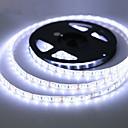 povoljno LED Strip svjetla-zdm vodootporan 5m 300 leda 3528 smd 8mm topli bijeli hladni bijeli crveni plavi zeleni rezni dc12 v ip65 samoprianjajući