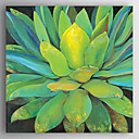 זול ציורים מופשטים-ציור שמן צבוע-Hang מצויר ביד - פרחוני / בוטני מודרני כלול מסגרת פנימית / בד מתוח