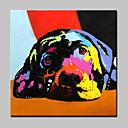 ราคาถูก ภาพวาดสัตว์-ภาพวาดสีน้ำมันแขวนทาสี มือวาด - สัตว์ต่างๆ ที่ทันสมัย พร้อมเฟรม
