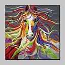 povoljno Slike sa životinjskim motivima-Hang oslikana uljanim bojama Ručno oslikana - Životinje Moderna With Frame / Prošireni platno