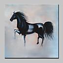 Χαμηλού Κόστους Πίνακες με Ζώα-Hang-ζωγραφισμένα ελαιογραφία Ζωγραφισμένα στο χέρι - Ζώα Ποπ Άρτ Μοντέρνα Περιλαμβάνει εσωτερικό πλαίσιο