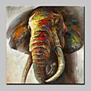 baratos Pinturas Animais-mintura® pintados à mão colorido elefante animal pinturas a óleo sobre tela moderna abstrata retrato da arte da parede para sala de estar decoração de casa pronto para pendurar