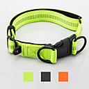 billiga Herraccessoarer-Hund Halsband Reflekterande Justerbara Bärbar Enfärgad Nylon Svart Orange Grön