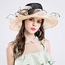 povoljno Party pokrivala za glavu-Svila / Organza Kentucky Derby Hat / kape s 1 Vjenčanje / Special Occasion / Zabava / večer Glava