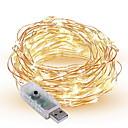 Χαμηλού Κόστους LED Φωτολωρίδες-10 ίντσες Φώτα σε Κορδόνι 100 LEDs SMD 0603 Θερμό Λευκό / Άσπρο / Πολύχρωμα Διακοσμητικό Τροφοδοτείται μέσω USB 1pc / IP65