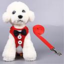 billiga Kragar, selar och koppel-Katt Hund Selar Andningsfunktion Vikbar Enfärgad Terylen Svart Röd