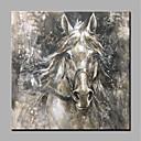 ราคาถูก ภาพวาดสัตว์-ภาพวาดสีน้ำมันแขวนทาสี มือวาด - สัตว์ต่างๆ สัตว์ โดยไม่ต้องภายในกรอบ / ผ้าใบรีด