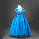 Χαμηλού Κόστους Κοστούμια με Θέμα Ταινίες & Τηλεόραση-Πριγκίπισσα Cinderella Φορέματα Κοστούμι πάρτι Φόρεμα κορίτσι λουλουδιών Παιδικά Κοριτσίστικα Γραμμή Α Ρούχο από μέσα Μεσοφόρι Βραδινής τουαλέτας Mesh Γενέθλια Χριστούγεννα Halloween Μασκάρεμα