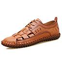 ราคาถูก รองเท้าแตะผู้ชาย-สำหรับผู้ชาย รองเท้าสบาย ๆ แน๊บป้า Leather ฤดูร้อน / ฤดูร้อนฤดูใบไม้ผลิ Sporty / ไม่เป็นทางการ รองเท้า Oxfords ระบายอากาศ สีดำ / สีน้ำตาล / กลางแจ้ง