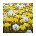povoljno Slike za cvjetnim/biljnim motivima-Hang oslikana uljanim bojama Ručno oslikana - Sažetak Cvjetni / Botanički Comtemporary Moderna Uključi Unutarnji okvir / Prošireni platno