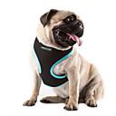 ราคาถูก ที่นอนและผ้าห่มสำหรับสุนัข-แมว สุนัข Harnesses ระบายอากาศ สายปรับได้ / สามารถพับเก็บได้ สีพื้น ตาข่าย ไนลอน กุหลาบ สีเขียว ฟ้า