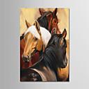 Χαμηλού Κόστους Πίνακες με Ζώα-Hang-ζωγραφισμένα ελαιογραφία Ζωγραφισμένα στο χέρι - Κινούμενα σχέδια Μοντέρνα Χωρίς Εσωτερικό Πλαίσιο / Κυλινδρικός καμβάς