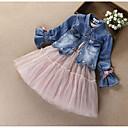 Χαμηλού Κόστους Φορέματα για κορίτσια-Παιδιά Κοριτσίστικα Ενεργό Κομψό στυλ street Καθημερινά Εξόδου Στάμπα Patchwork Φιόγκος Κεντητό Δίχτυ Μακρυμάνικο Βαμβάκι Σετ Ρούχων Ανθισμένο Ροζ