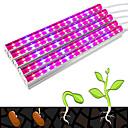 billiga LED-ljusslingor-YWXLIGHT® 3M Växande stripljus 75 lysdioder 5730 SMD 4 kontakter Violett 100-240 V 1set