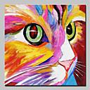 baratos Pinturas Animais-Pintura a Óleo Pintados à mão - Abstrato Arte Pop Modern Incluir moldura interna / Lona esticada
