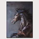 billiga Djurporträttmålningar-Hang målad oljemålning HANDMÅLAD - Abstrakt Popkonst Klassisk Moderna Utan innerram
