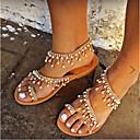 ราคาถูก รองเท้าส้นสูงผู้หญิง-สำหรับผู้หญิง หนังเทียม ฤดูร้อน ไม่เป็นทางการ รองเท้าแตะ ส้นแบน เปิดนิ้ว สีทอง / สีเงิน