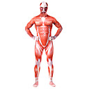 cheap Zentai Suits-Zentai Suits Full Body Suit Cosplay Adults' Lycra® Cosplay Costumes Halloween Men's Red Printing Halloween Carnival Masquerade