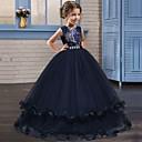 Χαμηλού Κόστους Φορέματα για κορίτσια-Πριγκίπισσα Μακρύ Μήκος Φόρεμα για Κοριτσάκι Λουλουδιών - Δαντέλα / Τούλι Αμάνικο Με Κόσμημα με Κρυστάλλινη λεπτομέρεια / Κέντημα