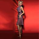 Χαμηλού Κόστους Μοδάτα Σκουλαρίκια-Λάτιν Χοροί Φορέματα Γυναικεία Επίδοση Spandex Φούντα Αμάνικο Φόρεμα