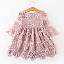 Χαμηλού Κόστους Φορέματα για κορίτσια-Παιδιά Νήπιο Κοριτσίστικα Γλυκός χαριτωμένο στυλ Rose Dusty Rose Φλοράλ Ζακάρ Δαντέλα Με Βολάν Κεντητό Μισό μανίκι Ως το Γόνατο Φόρεμα Λευκό / Βαμβάκι