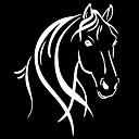 זול כלי ניקוי-מכונית סוס ראש ורעמת מדבקה מדבקה רכב קישוט