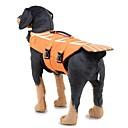 זול שטיחים-כלבים Waterproof וסט חגורת הצלה בגדים לכלבים פסים גיאומטרי ירוק כחול ירוק כהה פּוֹלִיאֶסטֶר תחפושות עבור כֶּלֶב צַיִד שיבה אינו סוֹלֵד כל העונות נקבה סגנון קלאסי