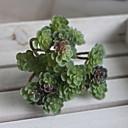 billige Kunstige planter-Kunstige blomster 1 Gren Klassisk Moderne Moderne Sukkulente planter Bordblomst