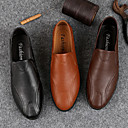 זול נעלי אוקספורד לגברים-בגדי ריקוד גברים נעלי עור עור חזיר סתיו חורף יום יומי נעליים ללא שרוכים ללבוש הוכחה שחור / חום בהיר / חום כהה