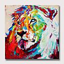 billiga Djurporträttmålningar-Hang målad oljemålning HANDMÅLAD - Djur Popkonst Moderna Utan innerram