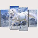 baratos Impressões-Estampado Laminado Impressão De Canvas - Animais Clássico Modern 4 Painéis Art Prints