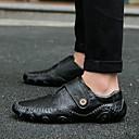 Χαμηλού Κόστους Ανδρικά Φορετά & Μοκασίνια-Ανδρικά Δερμάτινα παπούτσια Δερμάτινο Ανοιξη καλοκαίρι / Φθινόπωρο & Χειμώνας Καθημερινό / Βρετανικό Μοκασίνια & Ευκολόφορετα Αναπνέει Μαύρο / Καφέ