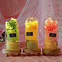 baratos Tapetes-Flores artificiais 1 Ramo Clássico Clássico Modern Gipsofila Flores eternas Flor de Mesa