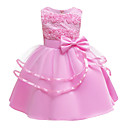 Χαμηλού Κόστους Φορέματα για κορίτσια-Παιδιά Νήπιο Κοριτσίστικα Βασικό χαριτωμένο στυλ Μονόχρωμο Φλοράλ Φιόγκος Patchwork Αμάνικο Ως το Γόνατο Φόρεμα Ανθισμένο Ροζ
