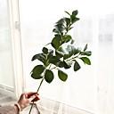 Χαμηλού Κόστους Βάζα & Καλάθι-Ψεύτικα λουλούδια 1 Κλαδί Κλασσικό Παραδοσιακό / Κλασικό Ευρωπαϊκό Φυτά Αιώνια Λουλούδια Λουλούδι για Τραπέζι