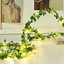 Χαμηλού Κόστους LED Φωτολωρίδες-2m Φώτα σε Κορδόνι 20 LEDs Θερμό Λευκό Διακοσμητικό 5 V 1set