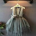 Χαμηλού Κόστους Φορέματα για κορίτσια-Παιδιά Νήπιο Κοριτσίστικα Βίντατζ χαριτωμένο στυλ Μονόχρωμο Δαντέλα Δίχτυ Αμάνικο Ως το Γόνατο Φόρεμα