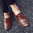 Χαμηλού Κόστους Ανδρικά Φορετά & Μοκασίνια-Ανδρικά Δερμάτινα παπούτσια Νάπα Leather Ανοιξη καλοκαίρι / Φθινόπωρο & Χειμώνας Βρετανικό / Κολεγιακό Μοκασίνια & Ευκολόφορετα Περπάτημα Μαύρο / Ανοικτό Καφέ / Σκούρο καφέ