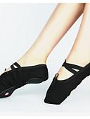 ราคาถูก เสื้อผู้หญิง-สำหรับผู้หญิง รองเท้าเต้นรำ ผ้าใบ บัลเล่ต์ ลูกไม้ขึ้น รองเท้าผ้าใบ ส้นแบบกำหนดเอง ตัดเฉพาะได้ สีดำ / แดง / สีชมพู / ฝึก / EU40