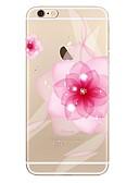 ราคาถูก เคสสำหรับโทรศัพท์มือถือ-Case สำหรับ Apple iPhone 7 Plus / iPhone 7 / iPhone 6s Plus Transparent / Pattern ปกหลัง ดอกไม้ Soft TPU