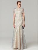 Χαμηλού Κόστους Βραδινά Φορέματα-Τρομπέτα / Γοργόνα Με Κόσμημα Μακρύ Τούλι Στυλ Διασήμων Κοκτέιλ Πάρτι / Χοροεσπερίδα / Επίσημο Βραδινό Φόρεμα 2020 με Πλισέ / Μπαλούν