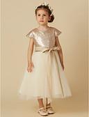 Χαμηλού Κόστους Λουλουδάτα φορέματα για κορίτσια-Πριγκίπισσα Κάτω από το γόνατο Φόρεμα για Κοριτσάκι Λουλουδιών - Τούλι / Με πούλιες Κοντομάνικο Με Κόσμημα με Φιόγκος(οι)