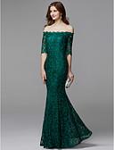 Χαμηλού Κόστους Βραδινά Φορέματα-Ίσια Γραμμή Ώμοι Έξω Μακρύ Δαντέλα Λουλουδάτο / Κομψό & Μοντέρνο / Κομψό Επίσημο Βραδινό / Μαύρο γκαλά Φόρεμα 2020 με Φερμουάρ