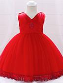 Χαμηλού Κόστους Βρεφικά φορέματα-Μωρό Κοριτσίστικα Ενεργό / Βασικό Πάρτι / Γενέθλια Μονόχρωμο Δαντέλα Αμάνικο Πάνω από το Γόνατο Βαμβάκι Φόρεμα Ανθισμένο Ροζ