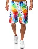 ราคาถูก กางเกงผู้ชาย-สำหรับผู้ชาย สไตล์ชายหาด / Tropical หลวม กางเกงขาสั้น กางเกง - ลายพิมพ์ สายรุ้ง L XL XXL
