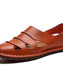 Χαμηλού Κόστους Δέρμα-Ανδρικά Οδήγηση παπούτσια Μικροΐνα Καλοκαίρι Καθημερινό / Βρετανικό Σανδάλια Αναπνέει Μαύρο / Ανοικτό Καφέ / Σκούρο καφέ